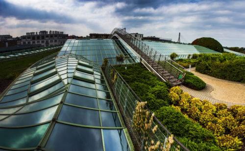 Варшавський університет Бібліотека Uniwersytet Warszawski фото