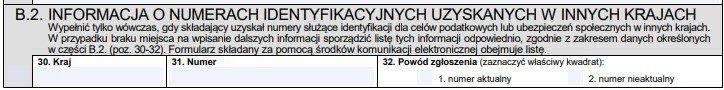 Информация об идентификационных номерах, которые были получены в других странах