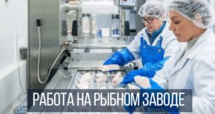 Работа на рыбном заводе в Польше