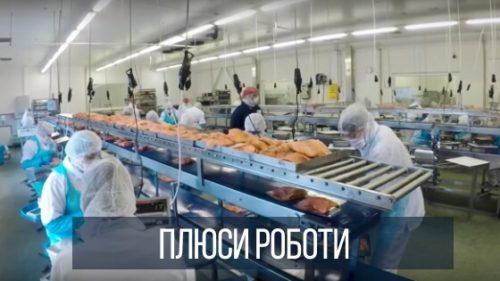 Плюси роботи в Польщі на рибному заводі