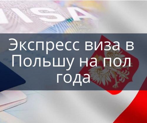 Экспресс виза в Польшу на пол года