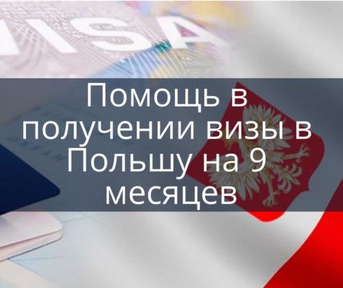 Помощь в получении визы в Польшу на 9 месяцев