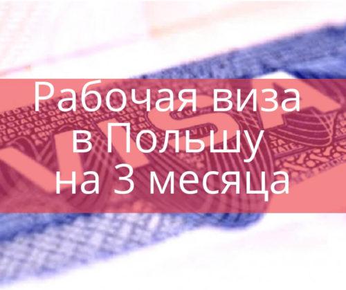 Рабочая виза в Польшу на 3 месяца