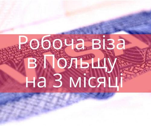 Робоча віза в Польщу на 3 місяці