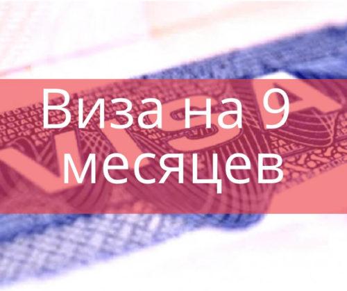 Рабочие визы в Польшу Виза на 9 месяцев