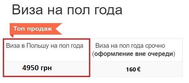 Рабочая виза в Польшу на пол года цена