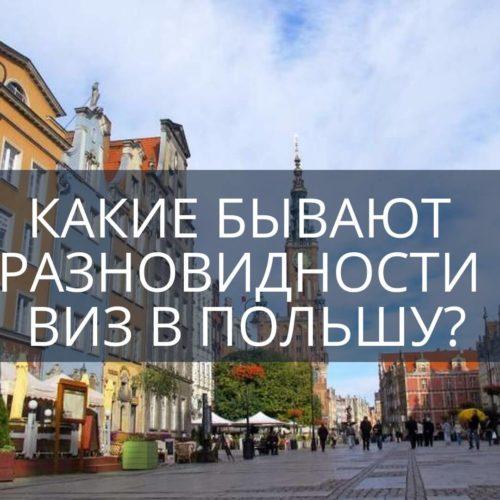 Какие бывают разновидности виз в Польшу?