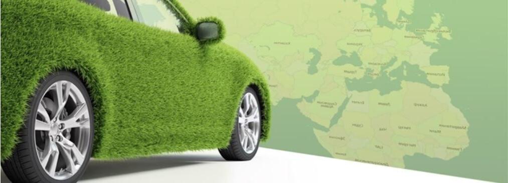 Зеленая карта оформить