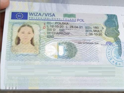 новая виза.jpg